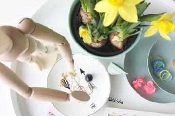 Still life con fiori freschi