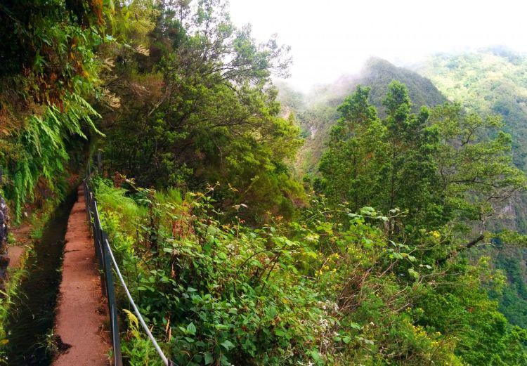 Madeira - Calderao Verde