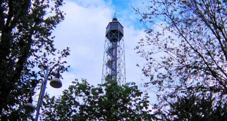 Neiade - Torre Branca - Pepite per Tutti